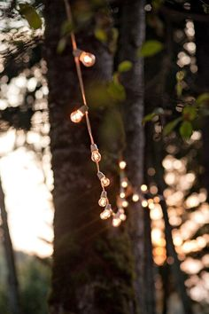 Festoon lighting in the backyard over the tables...