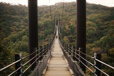 Suspension bridge by sprout