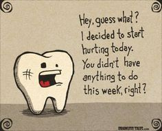 Our office has convenient hours just for you for any problem that may arise. You tooth didn't start hurting until Saturday? Our office is open every Saturday. Call our office and we will get you scheduled today. (406) 656-6100