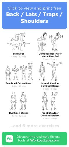 Free Workout: Back / Lats / Traps / Shoulders · WorkoutLabs Fit Lat Workout At Home, Traps Workout At Home, Trapezius Workout, Dumbbell Arm Workout, Kettlebell, Dumbbell Exercises, Best Trap Exercises, Back Exercises, Stretches