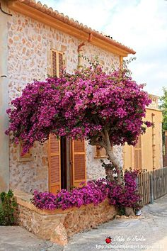 Beautiful Gardens, Beautiful Flowers, Beautiful Places, Future House, Garden Design, Outdoor Living, Scenery, Spain, Around The Worlds