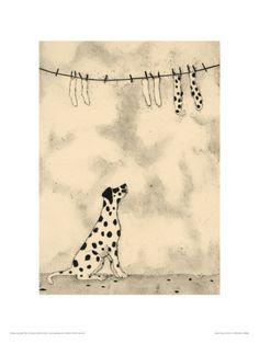 Spotty Dog And Socks Giclee Print FOR NOELLE