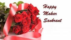 happy makar sankranti wishes with roses images Happy Makar Sankranti, Full Hd Wallpaper, Wallpaper Free Download, Roses, Wallpapers, Image, Pink, Rose, Wallpaper