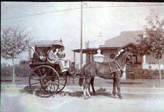 JJ Fine in buggy at 170 Prince's Avenue, Benoni approx 1906 Historical Pictures, African History, Family History, South Africa, Southern, Times, Country, Places, Beautiful