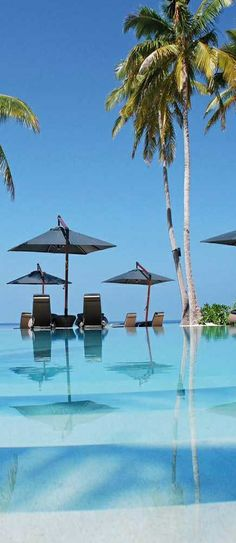 Halaveli Resort, Maldives  - Explore the World with Travel Nerd Nici, one Country at a Time. http://TravelNerdNici.com