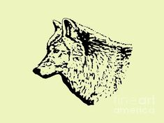 Fine Art America, Wolf, Moose Art, Digital Art, Wall Art, Artwork, Animals, Work Of Art, Animales