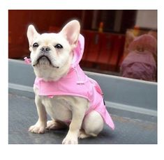 Pet Raincoat Dog Waterproof Hoodie Puppy Transparent Rainy Poncho PV Adjustable Rainwear with Hood Chest Protector for Small Medium Dog Poodle Teddy Bulldog Outdoor Jacket Collar Hole Doggy Jumper