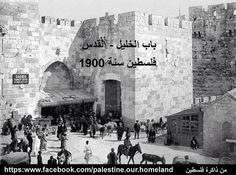 باب الخليل، القدس، فلسطين ١٩٠٠  AlKhalil (the Hebron) Gate, Jerusalem, Palestine 1900  Puerta del Khalil (Hebron), Jerusalén, Palestina 1900