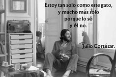 Julio Cortazar. Increible!!  I am as alone as this cat. But even more so. Because I know it. He doesn't.