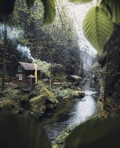 Some people want a big house, a fast car, and lots of money. Some people want a tiny cabin in the woods away from those kinds of people. 📸 by Frithjof Hamacher Travel Travelling Доступ к нашему блогу гораздо больше информации Cottage In The Woods, Cabins In The Woods, House In The Woods, Forest Cabin, Forest House, Tree Forest, Forest River, Ideas De Cabina, Haus Am See