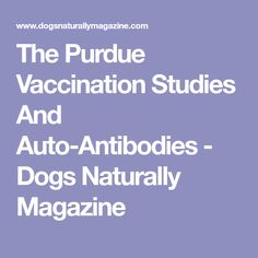 The Purdue Vaccination Studies And Auto-Antibodies - Dogs Naturally Magazine