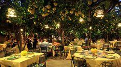 da Paolino Restaurantes em Capri - Menu e Pratos