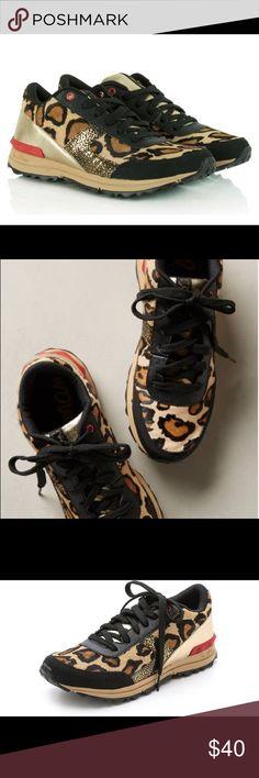 "a5fb59f09b907c Sam Edelman ""Dax"" EUC Sam Edelman Women s Dax Leopard Lace Up Trainer  Leopard Contrasting"