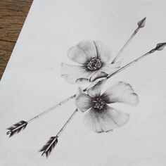 Flowers and arrows drawing in pencil