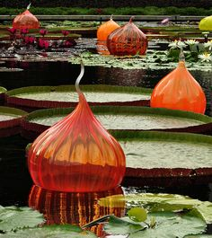 Dale Chihuly onions, photograph by yoshinski Dale Chihuly, Mosaic Glass, Stained Glass, Glass Vase, Cut Glass, Blown Glass Art, Glass Design, Fractal Art, Garden Art