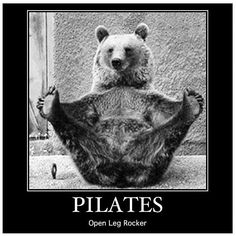 Pilates bear does it right! www.thepilatesflow.com.sg https://www.facebook.com/ThePilatesFlow