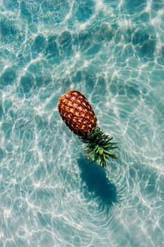 The Summer of Pineapple