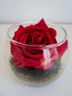 cadre tableau vegetal hortensia rose ternels fleurs. Black Bedroom Furniture Sets. Home Design Ideas