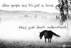 When people say its just a horse... they just don't understand