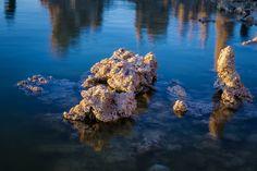 Mostly+Submerged+Tufa,+Mono+Lake