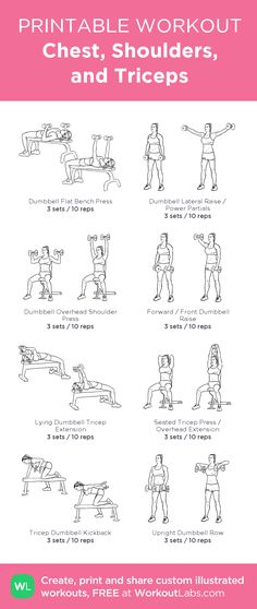 Chest, Shoulders, and Triceps