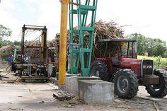 A Marie-Galante, une des dernières usines sucrières de la Guadeloupe