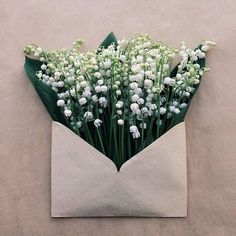 Sending Letters of Beauty with flowers Innovative bouquet idea Art Floral, Deco Floral, My Flower, Flower Art, Beautiful Flowers, Art Flowers, Flower Crafts, White Flowers, Lily Of The Valley
