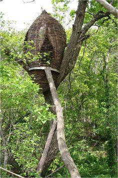 Japanese treehouse ~ Bunny Guinness Landscape Design