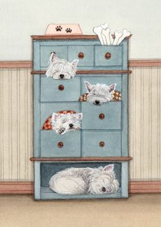 A dresser full of west highland terriers (westies) / Lynch signed folk art print by watercolorqueen on Etsy West Highland Terrier, Terrier Dogs, Pitbull Terrier, Westies, Tatty Teddy, Cutest Dog Ever, West Highland White, Dog Illustration, Animal Illustrations