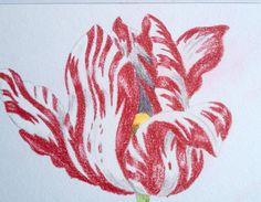 op n postcard vanhttp://pepinpress.com/product/floral-still-life-postcard-colouring-book/