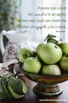Quote} Only God Can Count the Number of Apples in a Seed {Inspiring Quote} Only God Can Count the Number of Apples in a Seed :: Celebrating Everyday Life{Inspiring Quote} Only God Can Count the Number of Apples in a Seed :: Celebrating Everyday Life Apple Quotes, Fruit Quotes, New Fruit, Apple Fruit, Favorite Quotes, Best Quotes, Sallys Baking Addiction, Apple Seeds, Quotes About God