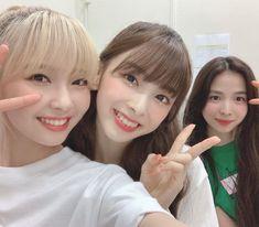 Forever Girl, Pop Photos, Japanese Girl Group, Japan Girl, Day6, New Girl, Kpop Groups, Mini Albums, Kpop Girls