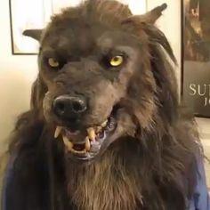 Werewolf Mask, Full Moon Night, Arte Robot, Character Makeup, Fantasy Monster, Exotic Women, Werewolves, Fursuit, Jada