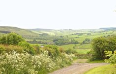 Such a beautiful view of the crags from Corby Cottage. http://www.thisispropology.co.uk/property/corby-cottage-edlingham/
