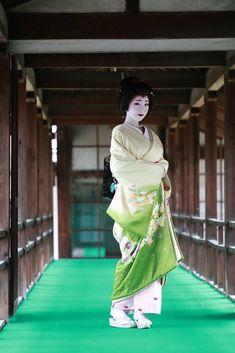 Geisha Japan, Japanese Geisha, Japanese Beauty, Japanese Kimono, Kyoto, Kabuki Costume, Green Kimono, Japanese Characters, Traditional Dresses