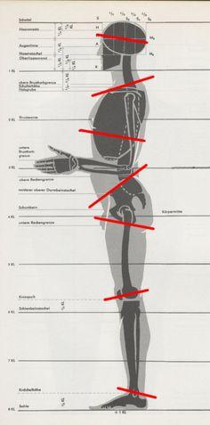 [转载]全身比例、结构分析@T-Hog采集到Poses(100图)_花瓣