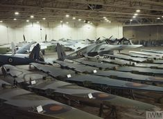 Mosquito aircraft in various stages of production at Hatfield. IWM
