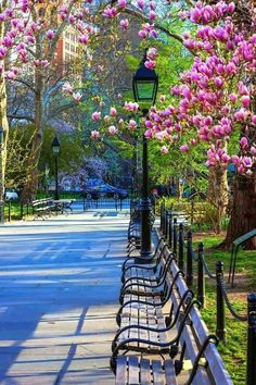 New York Central Park - definitely needs to be visited if staying in NYC! Places Around The World, Around The Worlds, Ville New York, Voyage New York, Foto Poster, I Love Nyc, City That Never Sleeps, Dream City, Concrete Jungle