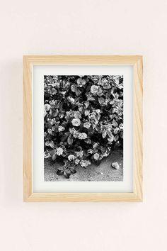 Slide View: 1: Debbie Carlos Black And White Flowers Art Print