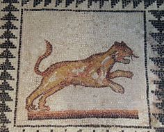 Detail of 3rd century ancient Roman mosaic with depiction of a panther, found in the Chiesa di San Giovanni in Conca in Piazza Missori in 1881, Civico museo archeologico di Milano