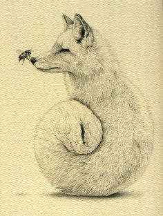 fox, drawing, and art afbeelding