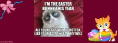 EASTER,  THEMES: HATE, GRUMPY CAT, ANIMALS.  Grumpy Meme from the Internet.  Designed with Pizap