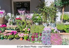 Stock Photo - Flower shop - stock image, images, royalty free photo, stock photos, stock photograph, stock photographs, picture, pictures, graphic, graphics