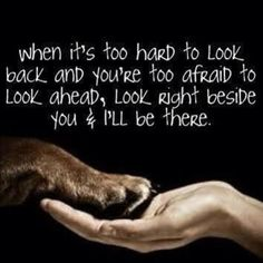 Like and Share is your dog is always there for you #lovedogs