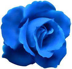 Blue Rose Clip Art PNG Image