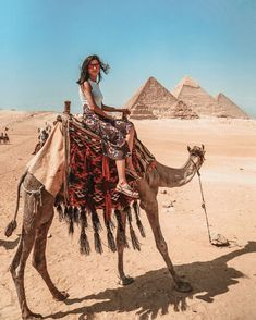 Enjoy 6 nights / 7 days Cairo, Luxor & Hurghada holiday to visit ancient Egypt attractions in Cairo & Luxor, then move to Hurghada to enjoy Red Sea holidays Cairo, Nile River Cruise, Visit Egypt, Toddler Travel, Egypt Travel, Travel Clothes Women, Giza, Future Travel, Day Tours