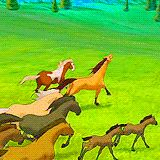 Spirit (gif) and Rain with his herd.
