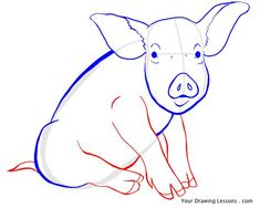 How To Draw Pigs   Congratulations on finishing the How to Draw A Pig tutorial! Now that ...
