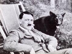 1-No dia 20 de abril de 1945, enquanto o exército soviético ia entrando em Berlim, Hitler comemorava seu 56º aniversário no seu abrigo. Um de seus generais mandou distribuir chocolates às tropas em honra ao aniversário do Führer  2-Para garantir que o cianureto que tomaria para se matar era eficiente, Hitler fez um teste em sua cachorra. A coitadinha morreu, é claro.