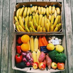 """avoidingthefreshman15: """" i could look at pictures of produce all day. following back all fitblrs! xx """""""